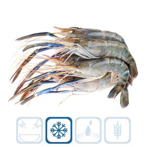 Scampi Shrimps U/12
