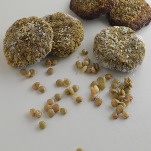 1 Dozen Sprouted Lentil Falafel (Gluten-Free)
