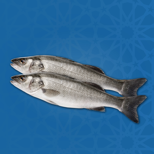 Sea Bass Offer - Large