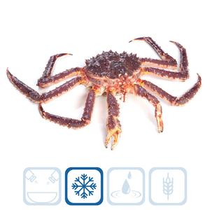 King Crab - 2.290 kg