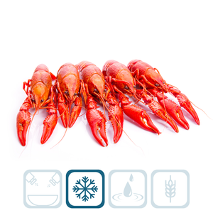 Crayfish Whole